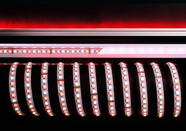 KAPEGO LED LED Stripe 5050-96-24V-RGB+6200K-3m-IP20