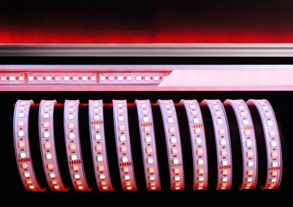 KAPEGO LED LED Stripe 5050-96-24V-RGB+4200K-5m-IP67