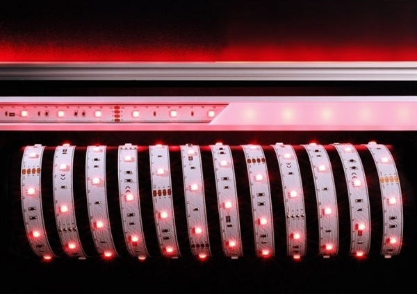 KAPEGO LED LED Stripe 5050-30-24V-RGB-15m-IP20
