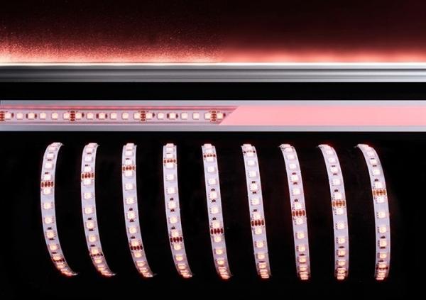 KAPEGO LED LED Stripe 5050-96-24V-RGB-3m-IP20